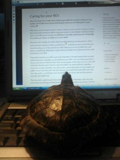 Sandy reading