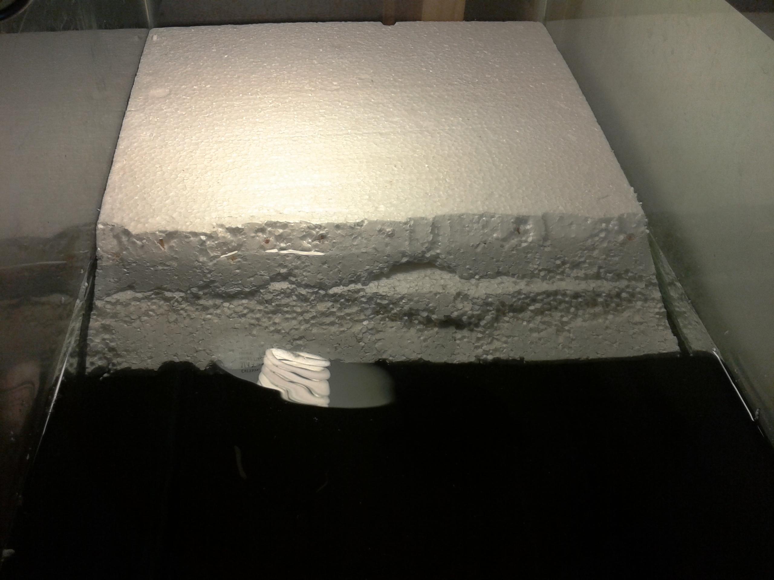Homemade Styrofoam Basking Platform D Beneath The Water